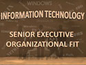 IT Senior Executive Organizational Fit