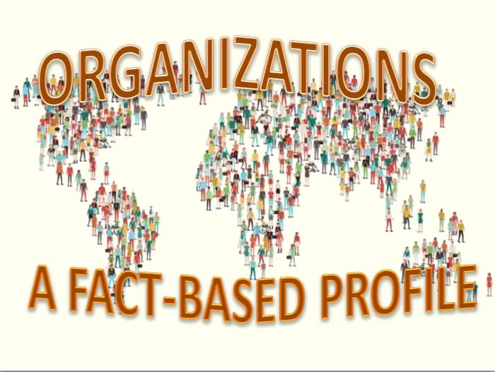 Organizations: A Fact-Based Profile ~ 22 MIN